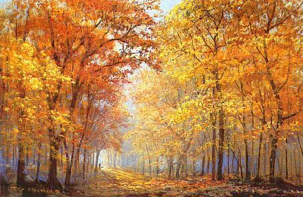 Bioma Hutan Gugur