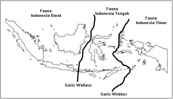 Gambar Wilayah Persebaran Fauna di Indonesia