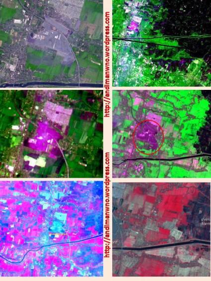 Pemanfaatan banyaknya warna dalam mengkaji kasus Lumpur Lapindo